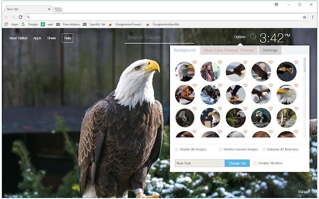 Eagle Custom Eagles New Tab by freeaddon.com