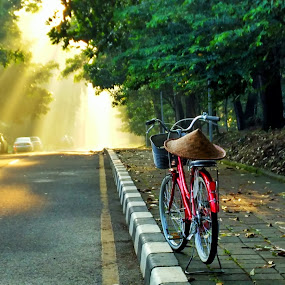 Lonely  by Tamlikho Tam - City,  Street & Park  Street Scenes