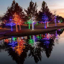 Vitruvian Park sunset by Bert Templeton - Public Holidays Christmas ( reflection, addison, texas, christmas, lake, vitruvian lights, lights,  )