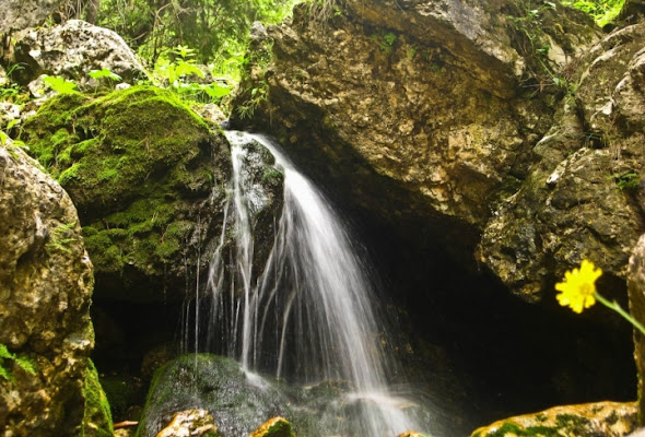 Acqua  roccia di mauromuggia