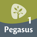 Pegasus 1 Woordentrainer icon