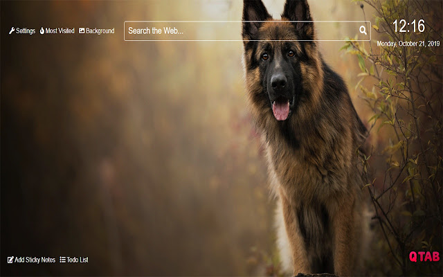 ShepherdWallpapersNewTabTheme