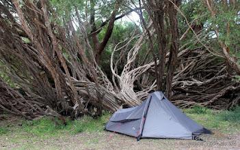 Photo: Camping at Gippsland Lake National Park