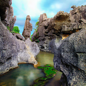 by Rifa Riza - Nature Up Close Rock & Stone ( silver, journey, rock, black, formation )