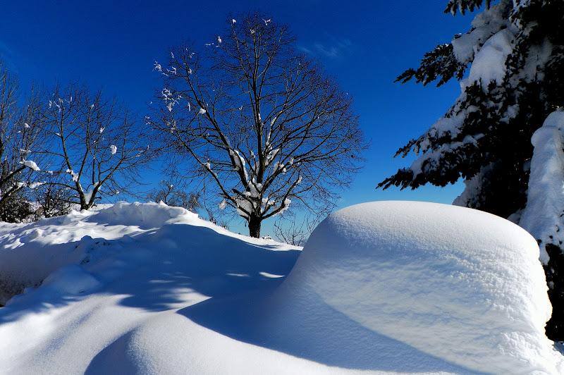Neve fresca di ellimo