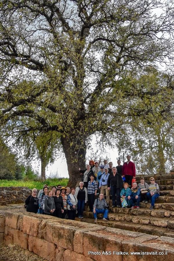 Экскурсия в Израиле. Экскурсовод Светлана Фиалкова с группой туристов в заповеднике Тель Дан.