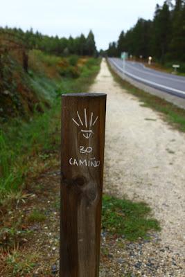 Camino del Norte: как я шла в Сантьяго-де-Компостела (Путь Святого Иакова).