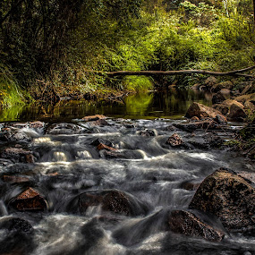 by David Spillane - Landscapes Waterscapes
