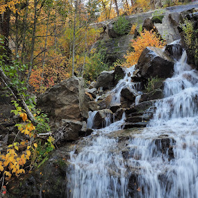 Fall Color's by Jennifer Parmelee - Landscapes Waterscapes ( places, leaves, nature, water, colors,  )