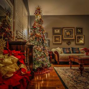 by Angela Higgins - Public Holidays Christmas
