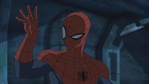Spider Slayers: Part 2 thumbnail
