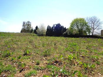 terrain à Thomer-la-Sôgne (27)
