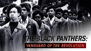 The Black Panthers: Vanguard of the Revolution thumbnail