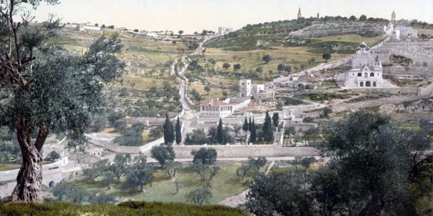 Khác biệt giữa Núi Ô-liu và Vườn Ghết-sê-ma-ni là gì