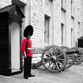 London Tower Guards by Andrew Holland - Buildings & Architecture Public & Historical