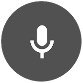 Voice Calculator Widget