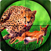 Cheetah Hunter 2016