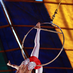 A Swing to Bliss by Balaji Mohanam - News & Events Entertainment ( performer, bliss, swing, circus )
