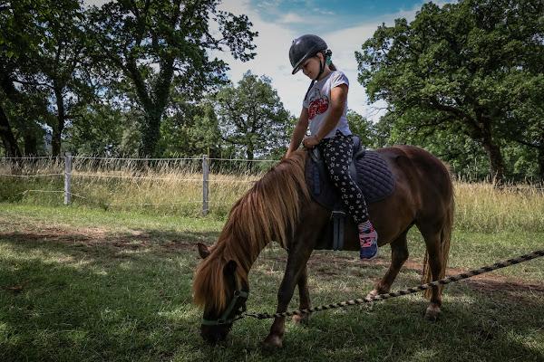 Prima lezione di equitazione di VIC61