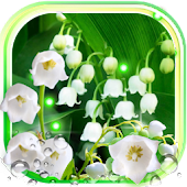 Forest Lilies Live Wallpaper Android APK Download Free By SweetMood
