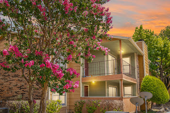 Go to Bella Vista Pointe Apartments website