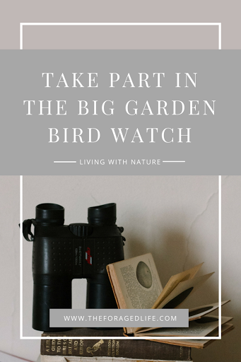 Take Part in the RSPB Big Garden Bird Watch | Living with Nature by The Foraged Life