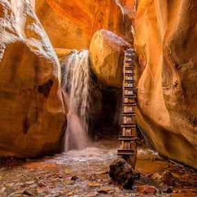 Slippery Ascent by Eric Yiskis - Landscapes Deserts ( slot canyon, utah, kanarracreek, landscape, zion, kanarra )