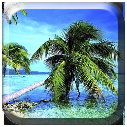 Nature HD Pics Live Wallpaper