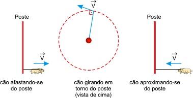 Assinale a opção que representa como  a distância d entre o cão e o poste varia com o tempo t