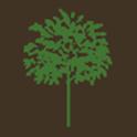 Milarch Nursery Inc icon