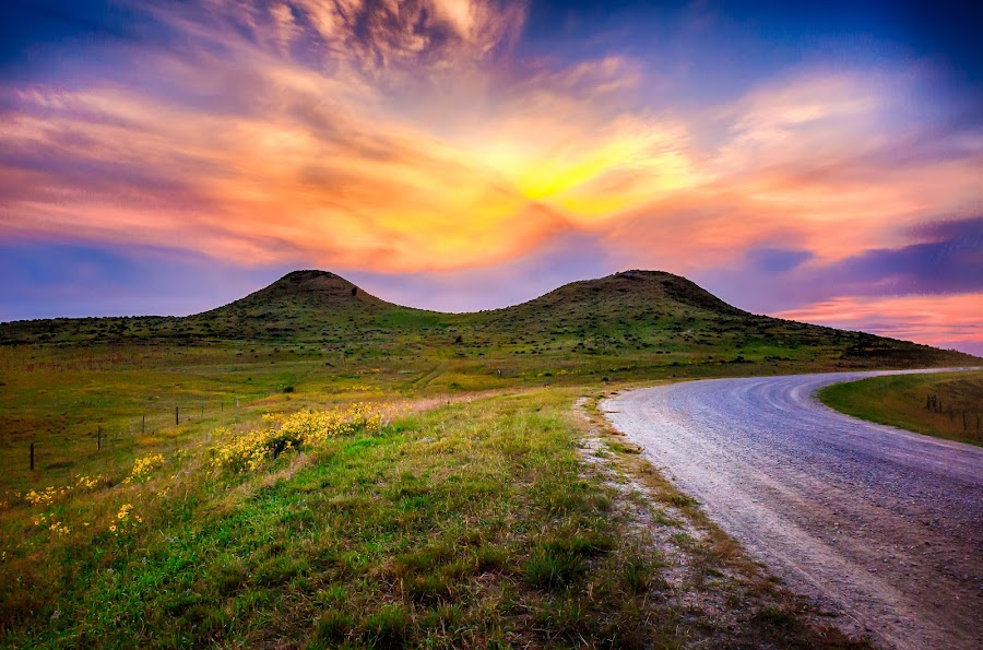 Dog Ear Buttes  by Kendra Perry Koski - Landscapes Mountains & Hills ( 2017, hills, tripp county, dakotawindsphoto.com, back roads, sunflowers, twilight, us, south dakota, winner, cattle, rural, country, local landmark, rolling hills, bule, dog ear buttes, nature, violet, summer, pink, long exposure, september,  )