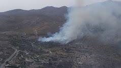 Imagen del incendio publicada por Infoca en su cuenta de Twitter: @Plan_INFOCA.