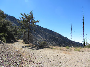 Photo: View southeast on South Mount Hawkins Lookout Road