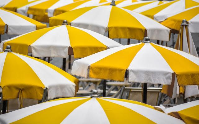 spicchi gialli e . . . . puntali grigi di Paolo Scabbia