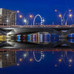 by Senthil Damodaran - Buildings & Architecture Bridges & Suspended Structures ( architecture, bridge, singapore, pwcbridges )