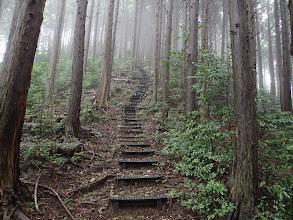 階段を振り向く
