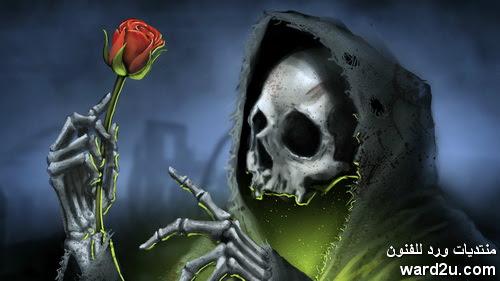 سر الحب جمال الروح
