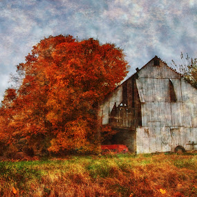 The Barn That Time Forgot by Kara Brothers - Buildings & Architecture Other Exteriors ( farm, indiana, barn, autumn, textures, farming, rural, country )
