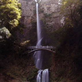 Multnomah Falls by Jorge Pacheco - Landscapes Waterscapes
