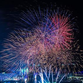 NDP firework by Maskun Ramli - News & Events Entertainment