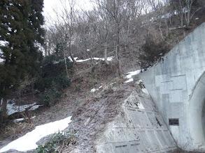 トンネルの上部を林道へ