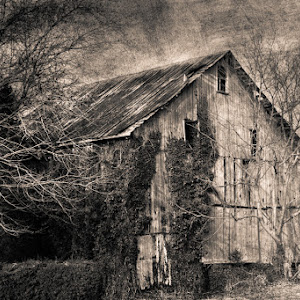 Another barn for the ages (1 of 1).jpg