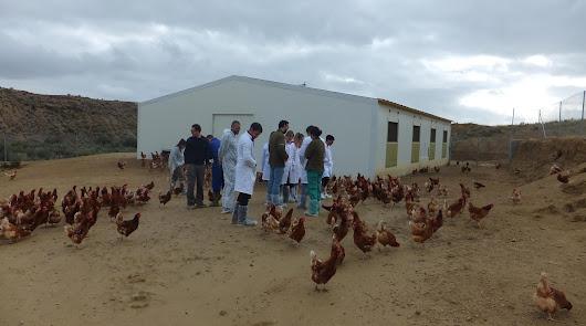 La Junta muestra la realidad del sector ganaderos a estudiantes de la UAL
