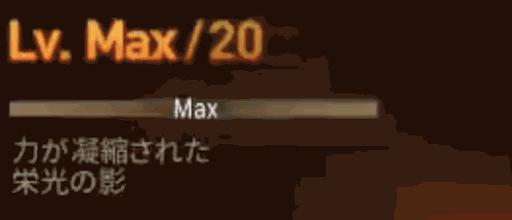 レベルMAXの幻影