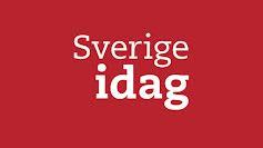 Sverige idag på romani chib/kalderash