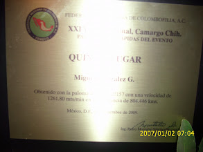 Photo: Placa por haber obtenido el quinto lugar a nivel Nacional de Cd. Camargo 804 km. ruta adultas 2009.