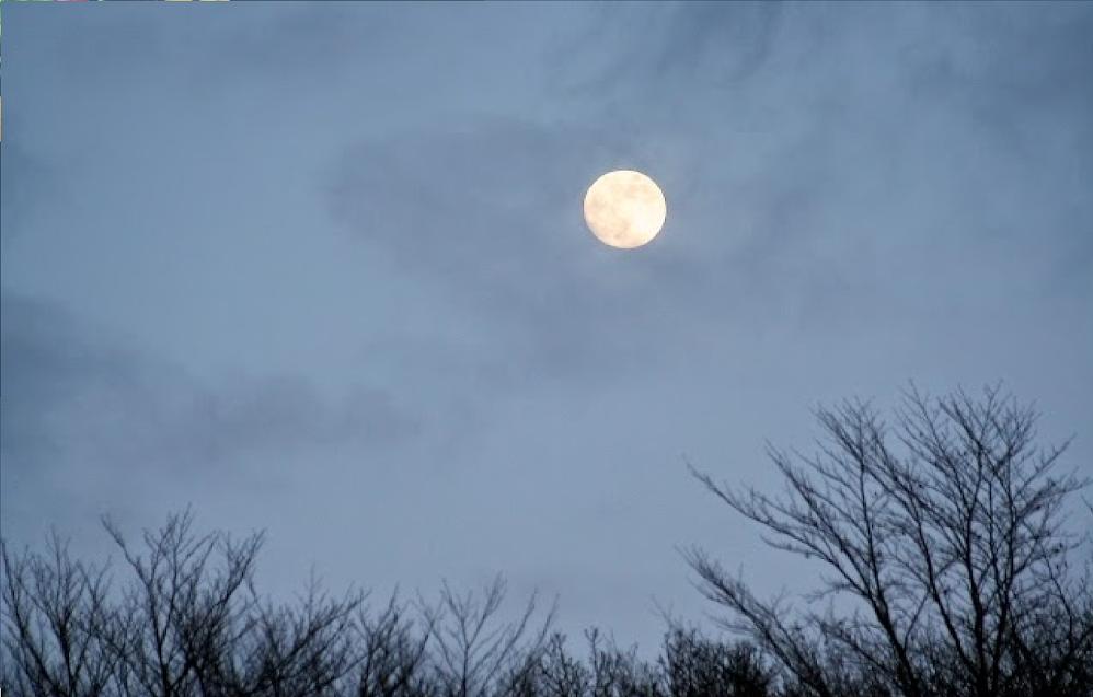 Do Full Moons Affect Your Sleep?