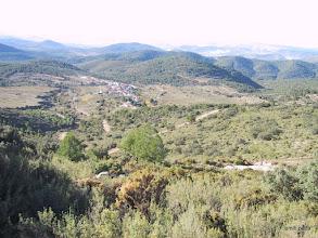Photo: Delfín