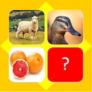 Guess picture name quiz
