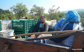 Photo: Artemis Kutsal Yolu 2. Etabı - 04.10.2015 Selçuk - İzmir